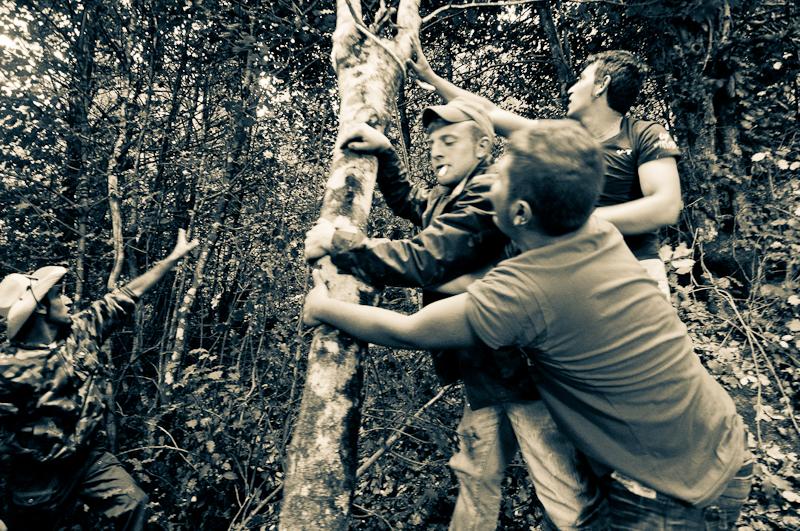 La cima dell'albero di Castelmezzano