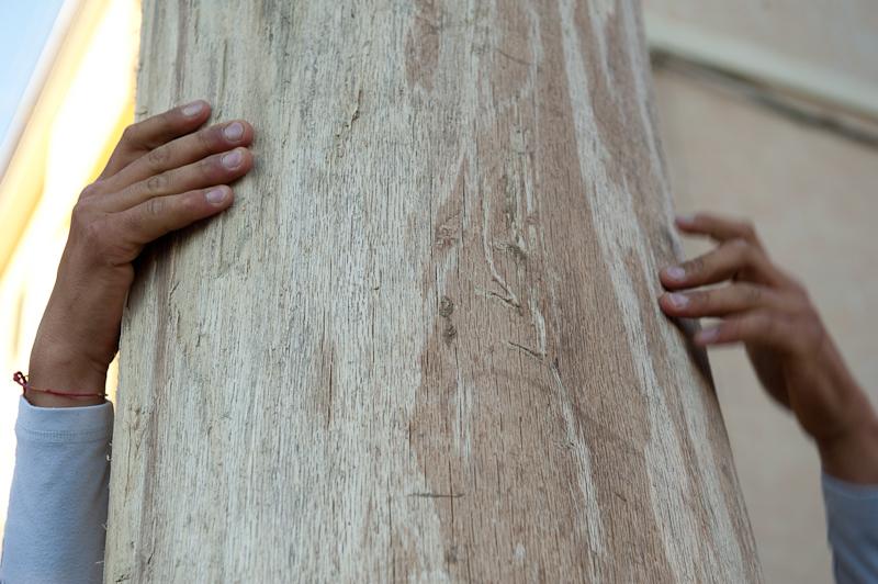Salire sull'albero a Pietrapertosa