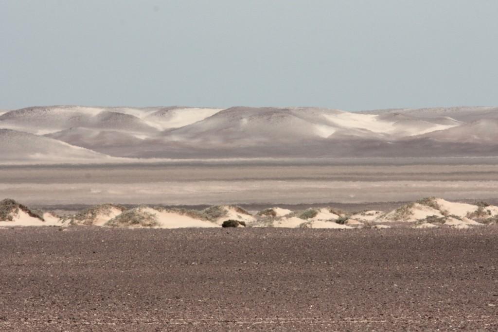 le dune di sabbia si perdono fino all'orizzonte