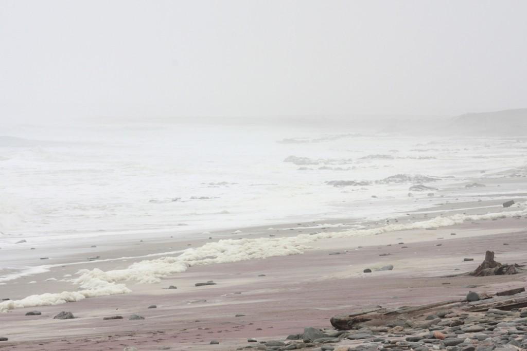 il bianco della nebbia si confonde con quello delle onde