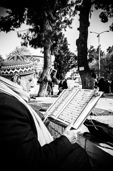 Gerusalemme, studio nella Spianata delle Moschee