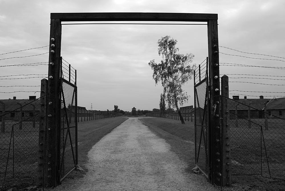 Sotto continuo controllo Il senso di orrore si respira immediatamente nello sterminato campo di Birkenau II, dove tra cancelli, chilometri di filo spinato e torrette senti come un sguardo continuo, che non ti abbandona.