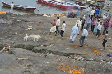 Varanasi, marzo 2016 - Francesco Parrella