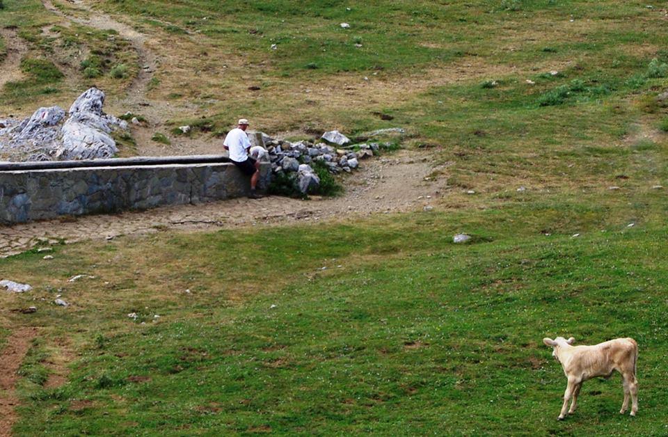 Fontana di Piano Gaudolino, Monte Pollino