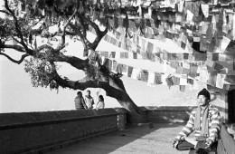 Mistic Nepal   Erodoto108