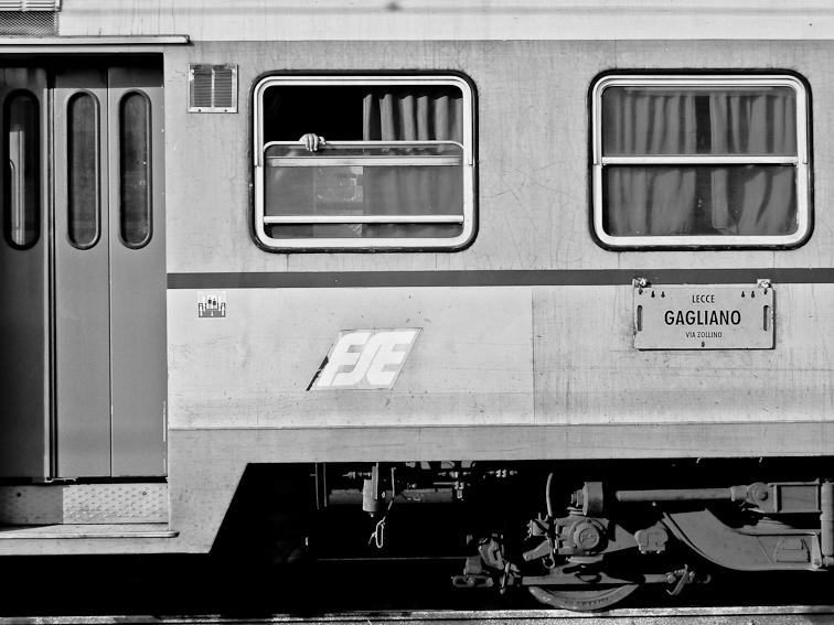 Le Ferrovie del Sud Est