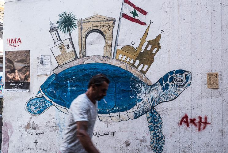 tartaruga del Libano a Tiro